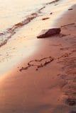 Puesta del sol del amor Foto de archivo