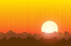 Puesta del sol del bosque ilustración del vector