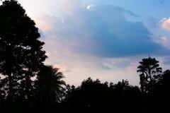 Puesta del sol del campo con el azul Imagenes de archivo