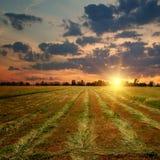 Puesta del sol del campo en el campo Imagen de archivo
