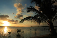 Puesta del sol del Caribe Fotografía de archivo libre de regalías