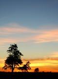 Puesta del sol del centro Fotografía de archivo libre de regalías