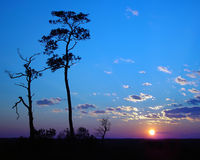 Puesta del sol del cielo azul Imagenes de archivo