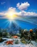 Puesta del sol del cielo y corales subacuáticos con las estrellas de mar Imagenes de archivo