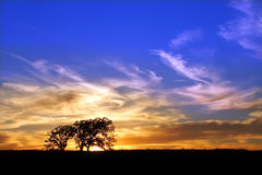 Puesta del sol del coto de naturaleza de la pradera de Jarrett Fotos de archivo