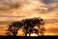 Puesta del sol del coto de naturaleza de la pradera de Jarrett Foto de archivo libre de regalías