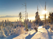 Puesta del sol del invierno Fotos de archivo libres de regalías