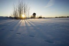 Puesta del sol del invierno fotos de archivo