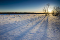 Puesta del sol del invierno Foto de archivo libre de regalías