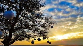Puesta del sol del invierno Imagen de archivo libre de regalías