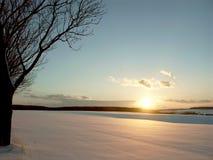 Puesta del sol del invierno con el árbol en el campo Foto de archivo