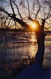 Puesta del sol del invierno en el río de Dniepr Fotos de archivo