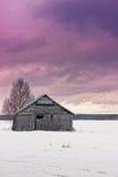 Puesta del sol del invierno en los campos Fotos de archivo libres de regalías