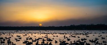 Puesta del sol del lago Imagen de archivo libre de regalías