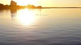 Puesta del sol del lago cityscape metrajes