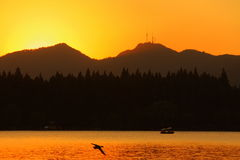 Puesta del sol del lago del oeste Foto de archivo