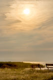 Puesta del sol del Latte foto de archivo