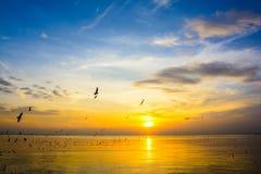 Puesta del sol 6 del mar Foto de archivo