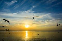 Puesta del sol 7 del mar Fotos de archivo libres de regalías