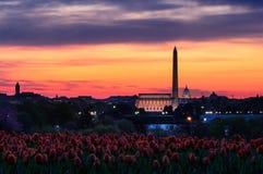 Puesta del sol del monumento de Washington Imagenes de archivo