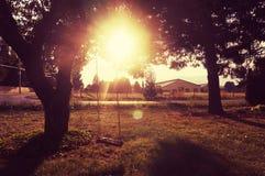 Puesta del sol del oscilación Foto de archivo
