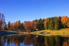 Puesta del sol del otoño en parque Foto de archivo