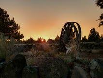 Puesta del sol del país Foto de archivo