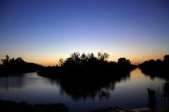 Puesta del sol del pantano Imagen de archivo libre de regalías