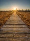 Puesta del sol del paseo marítimo de la pradera Fotografía de archivo libre de regalías