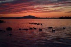 Puesta del sol del río Columbia Fotografía de archivo libre de regalías