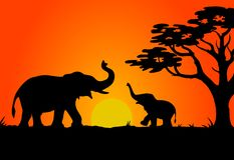 Puesta del sol del safari Ilustración del Vector