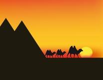 Puesta del sol del vector en Egipto Imagenes de archivo