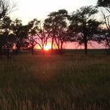 Puesta del sol del verano Imagenes de archivo