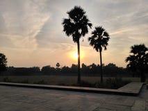 Puesta del sol detrás de dos palmeras Foto de archivo libre de regalías