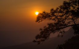 Puesta del sol detrás del árbol Imagen de archivo libre de regalías