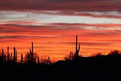 Puesta del sol dramática de Arizona Fotos de archivo libres de regalías