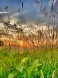 Puesta del sol dramática hermosa sobre un campo Fotos de archivo libres de regalías