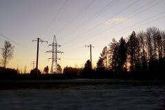 Puesta del sol, el bosque por el lado del camino fotos de archivo libres de regalías
