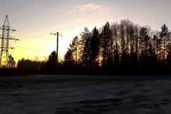Puesta del sol, el bosque por el lado del camino imagen de archivo