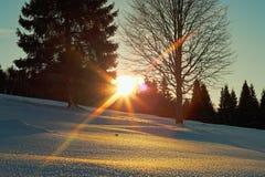 Puesta del sol el día de invierno Fotos de archivo