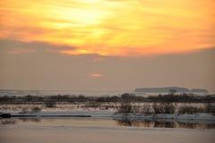 Puesta del sol el invierno un prado fotos de archivo libres de regalías