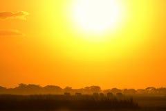 Puesta del sol en Amboseli, Kenia Fotografía de archivo libre de regalías