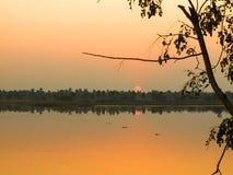 Puesta del sol en bosque cerca del pequeño río en Tailandia Foto de archivo libre de regalías