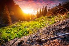 Puesta del sol en bosque de la montaña imagen de archivo libre de regalías