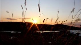 Puesta del sol en Bulgaria almacen de video
