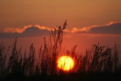 Puesta del sol en campo Imagenes de archivo