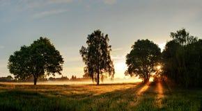 Puesta del sol en campo Fotos de archivo