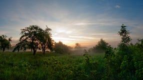 Puesta del sol en campo Fotografía de archivo libre de regalías