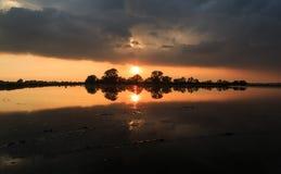 Puesta del sol en campo del arroz foto de archivo