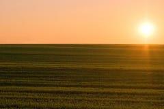 Puesta del sol en campos Imagenes de archivo